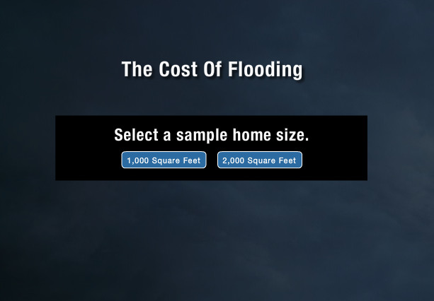 Cost of Flooding
